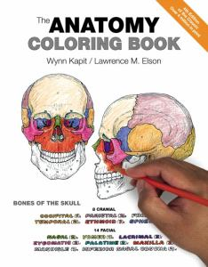 ANATOMY COLORING BOOK 4TH, by KAPIT, WYNN
